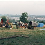 Greenfields 1986